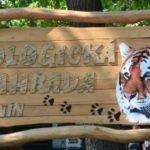 zoologicka zahrada hodonin