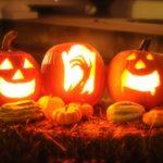 pumpkin 2327488 1920